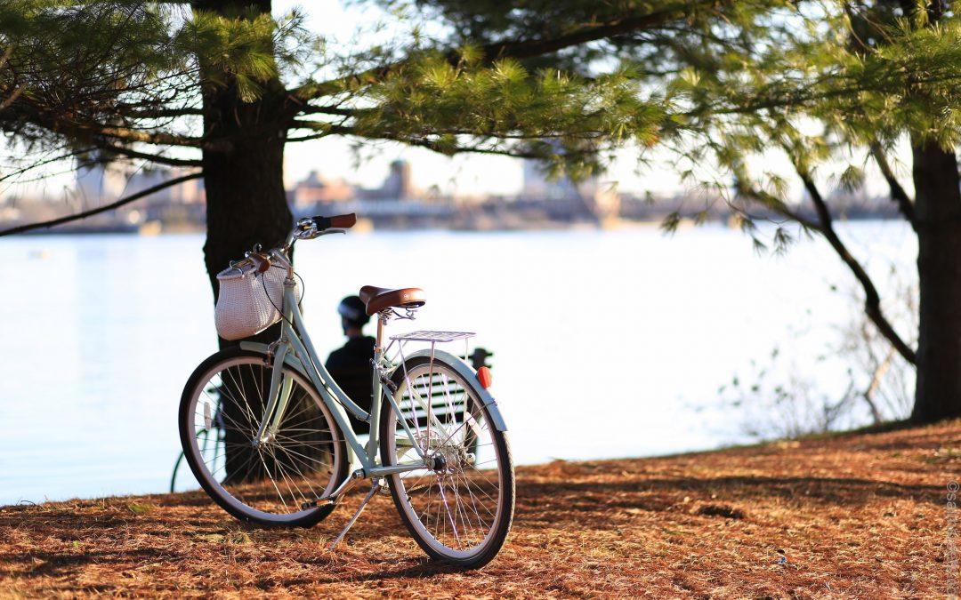 Cicloturismo: salir de vacaciones y descubrir nuevos lugares sobre ruedas