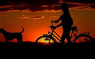 ForRiders: tu tienda de alquiler de bicicletas en Alicante