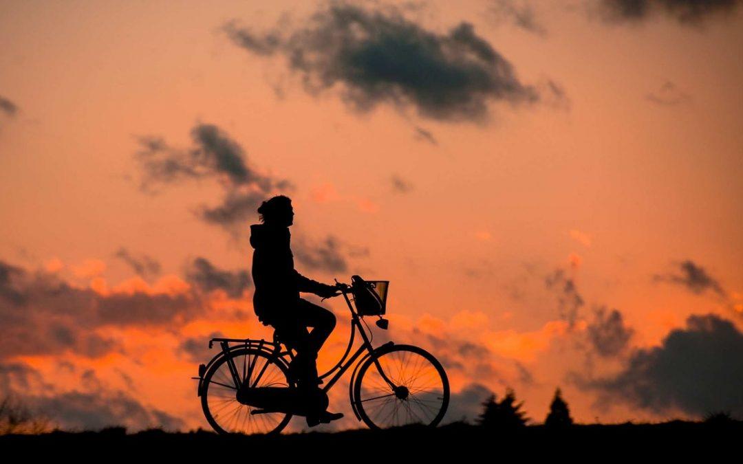 ¿Cuáles han sido las 5 bicis más populares del verano?