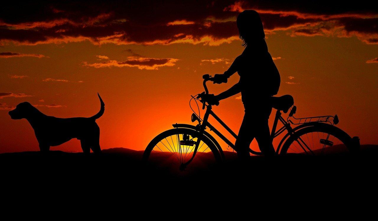 5 rutas navideñas con tu bici