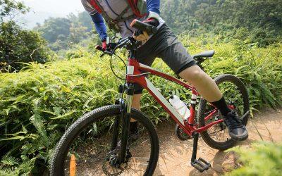 Las mejores rutas Navideñas para hacer con la Bici